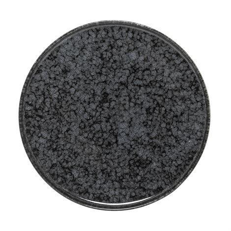 Bloomingville Noir Lautanen Ø 18 cm