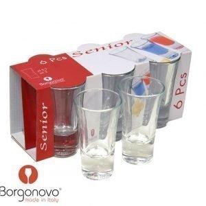 Borgonovo Senior Snapsilasi 5
