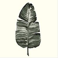 Broste Leaf Paperiservetti 33x33 Cm