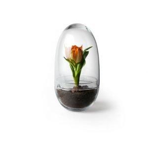 Design House Stockholm Grow Large Minikasvihuone 12 Cm