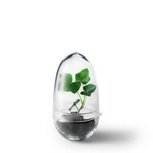 Design House Stockholm Grow Small Minikasvihuone 8 Cm