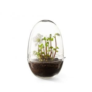 Design House Stockholm Grow X Large Minikasvihuone 20 Cm