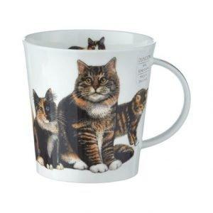 Dunoon Cairngorm Cats & Kittens Muki 0