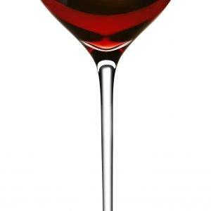 Eva Solo Bordeaux Viinilasi Kirkas 39 Cl