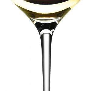 Eva Solo Sauvignon Blanc Viinilasi Kirkas 30 Cl