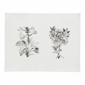 Flora Tabletti Beige