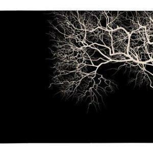 Galzone Tabletti puulla Musta 44x28