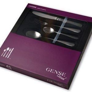 Gense Causal Cayenne 4x6