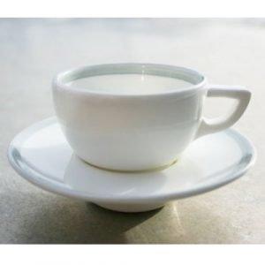 Gustavsberg Sommar Espressokuppi Ja Lautanen Koivu