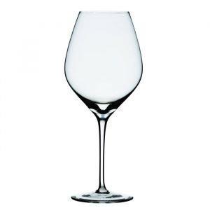 Holmegaard Cabernet Viinilasi Medium
