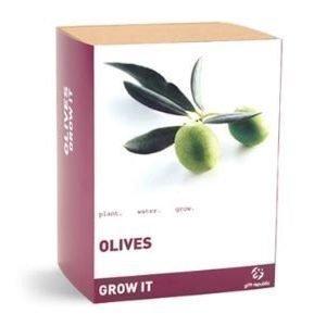 Omat oliivit kasvatuspaketti
