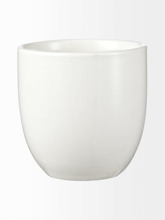 Oriental Selection White Plum Teekuppi 7