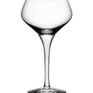 Orrefors Intermezzo Satin Champagne Coupe 23 cl