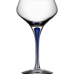 Orrefors Intermezzo sininen Champagne 23 cl