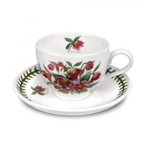 Portmeirion Botanic Garden Teekuppi Ja Aluslautanen Joulukuu