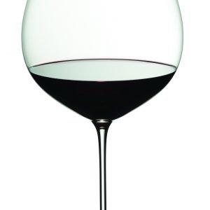 Riedel Veritas Old World Pinot Noir Lasi 2 Kpl