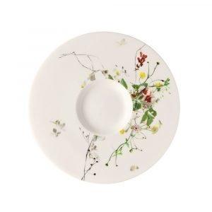 Rosenthal Brillance Fleurs Sauvages Tee / Cappuccinovati 16 Cm