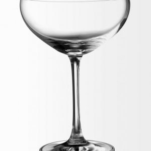 Schott Zwiesel Bar Special Kuohuviinilasi 281 ml