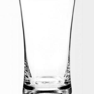 Schott Zwiesel Basic Pint Olutlasi 0
