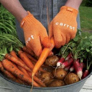 Skrub'a Carrot Kuurauskinnas