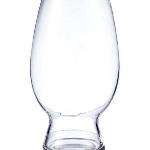 Spiegelau American Wheat Beer/Witbier Vehnäolutlasit 170 Ml 4 Kpl
